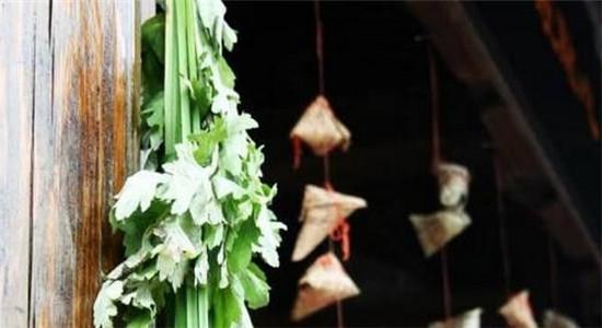 """六神艾叶健肤系列见证以""""艾""""为本的强大力量"""